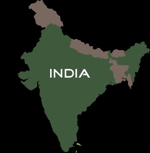 DUG:2018春季APP市场报告之印度篇