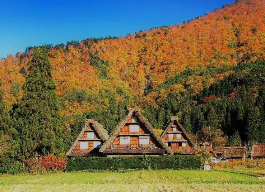 日本农村的生活写照